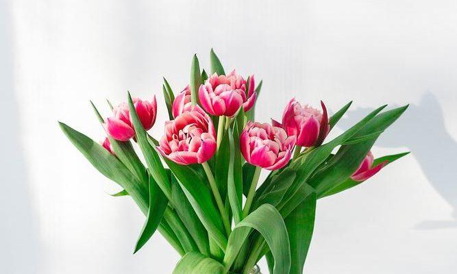 Lad din online blomsterbutik sammensætte din buket